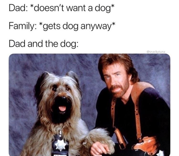 bad ass - meme