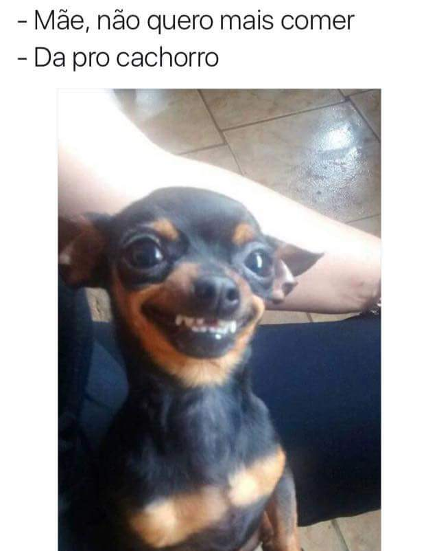 Sorriso sincero - meme