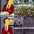 Millones de personas querían el verdadero peronismo