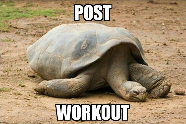 Post workout - meme