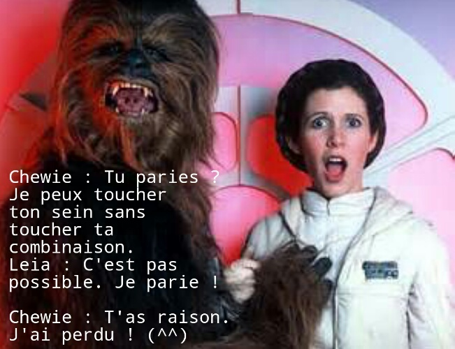 Malin le Chewie ! - meme