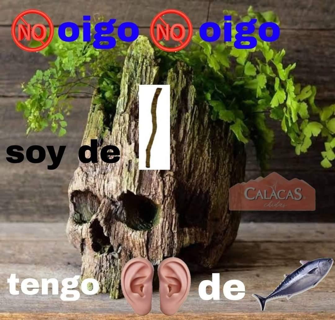 Calacas chidas 3 - meme
