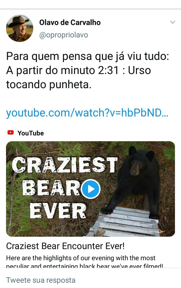 When you think you already see everyting: 2:31 min.: Bear tocandow pownheta - meme