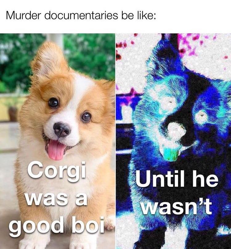 until he wasn't - meme
