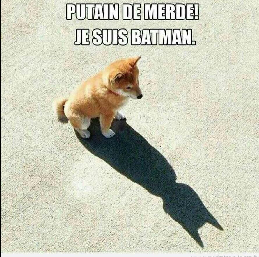 Batman!!!!(image trouvée sur internet donc il est possible que ce soit un repost) - meme