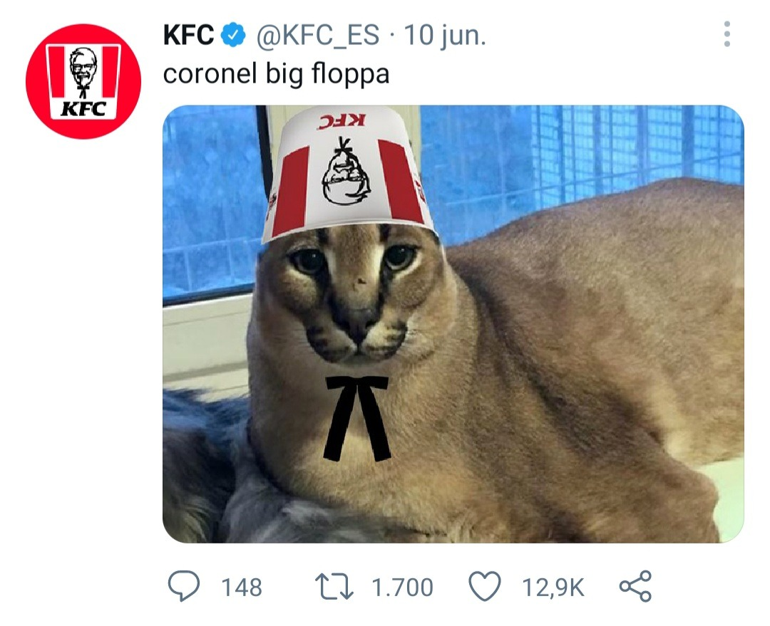 Ti amo coronel floppa - meme