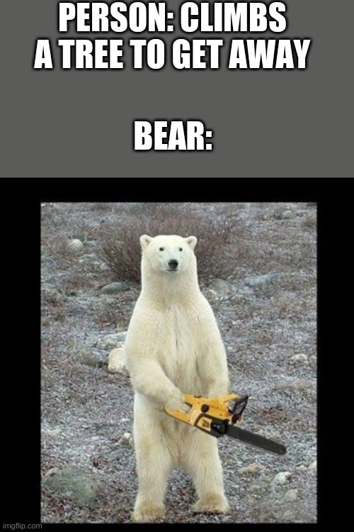 Chainsaw Bear - meme