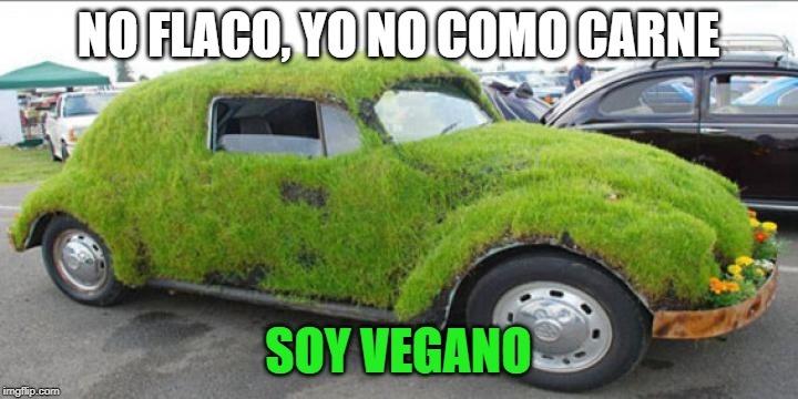 Auto vegano - meme