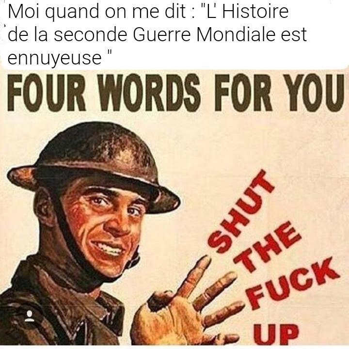 C'est de la propagande môssieur - meme