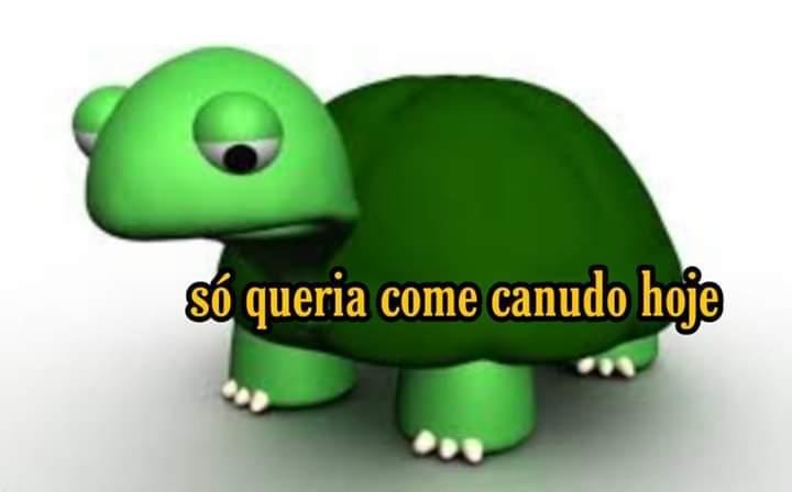 Sad Turtle - meme