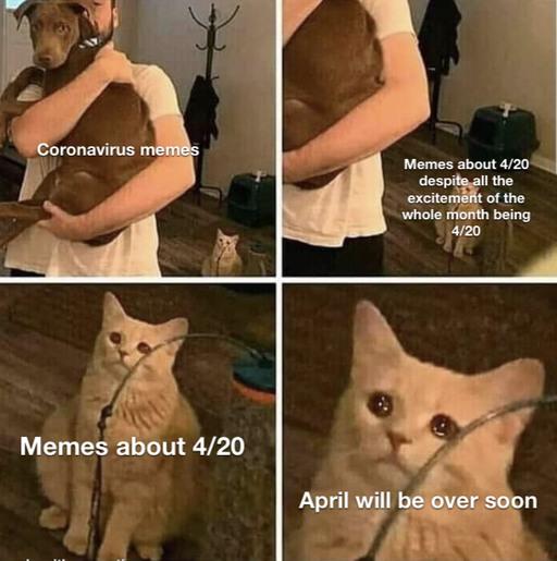 please don't waste it - meme
