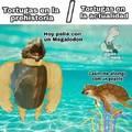 Tortugas bergas prehistóricas