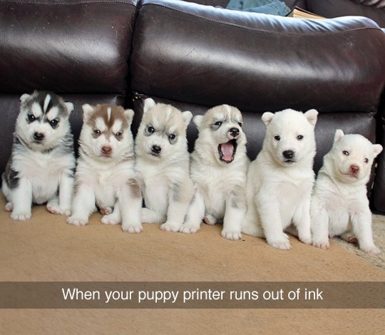 printer is empty - meme