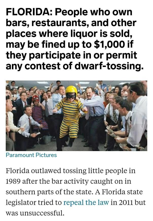 Wtf Florida - meme