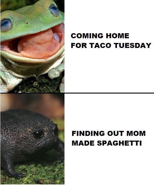 It's Taco Tuesday! - meme