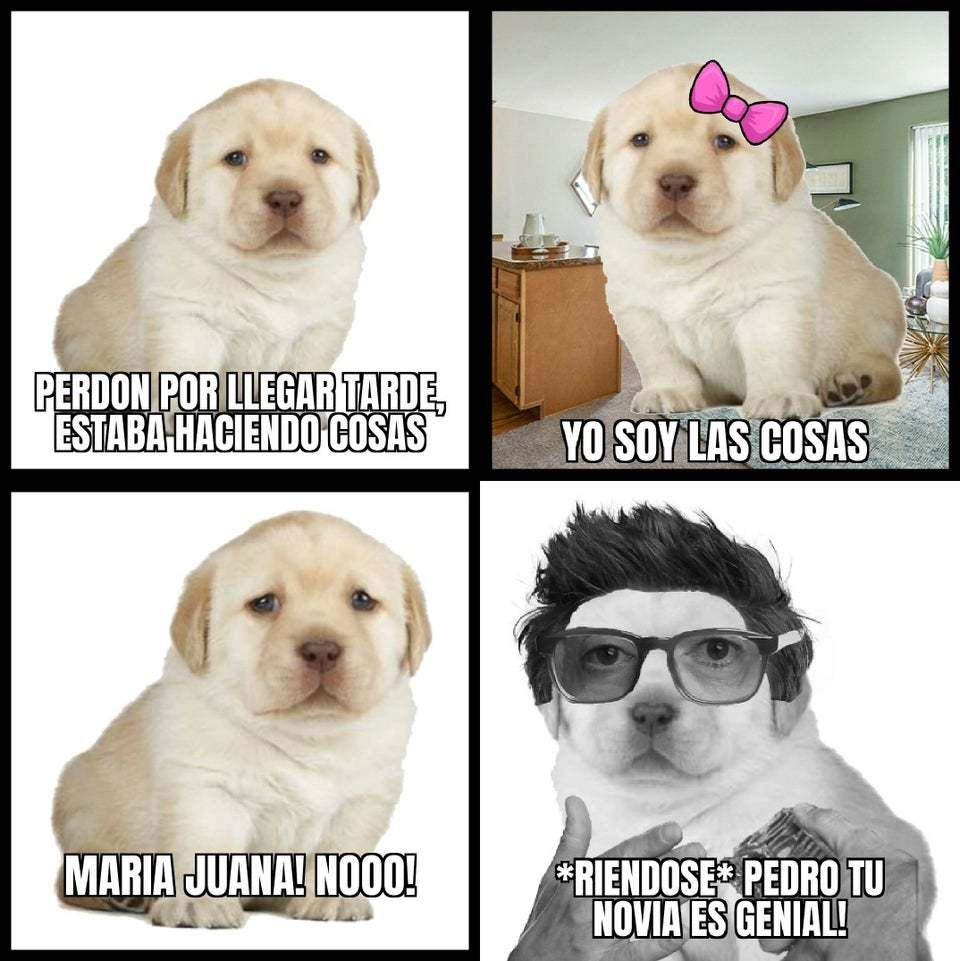 Televisapresenta - meme