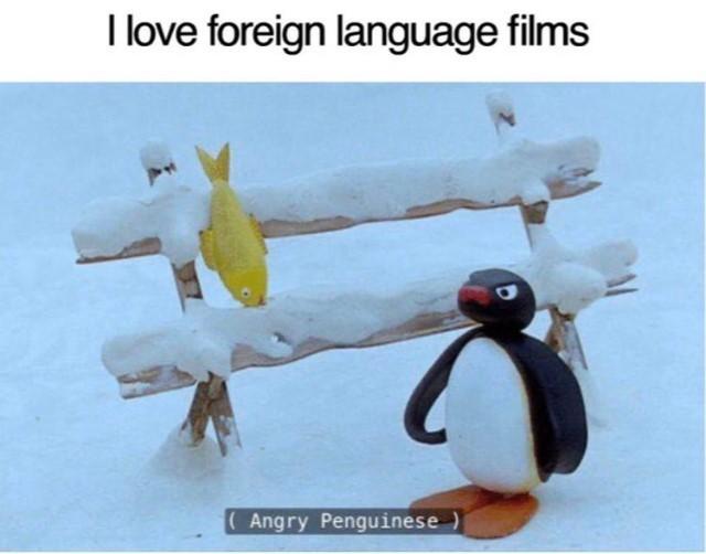 penguinese - meme