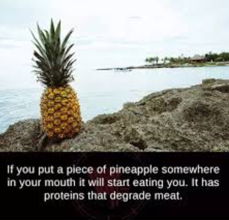 Why I don't eat pineapples - meme