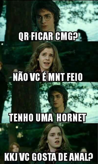 Você disse HORNET ? - meme