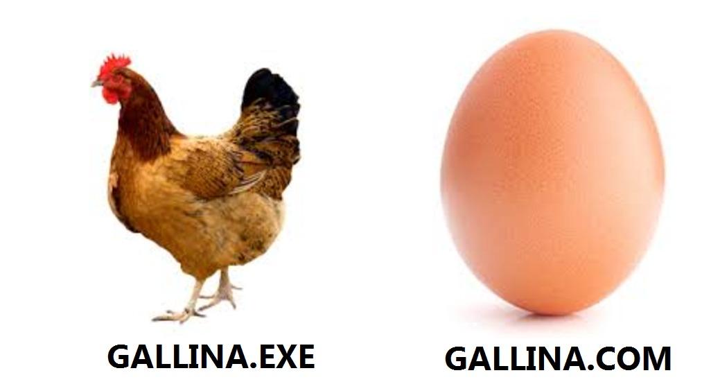 gallo - meme