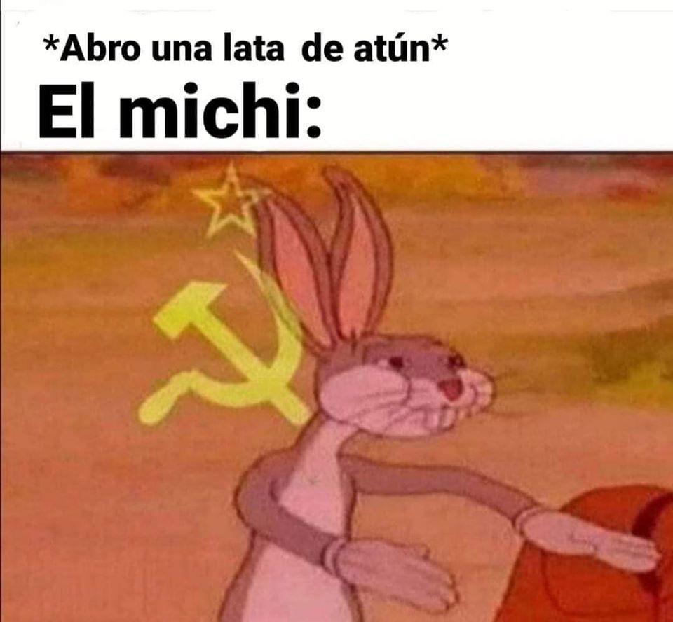 el michi - meme