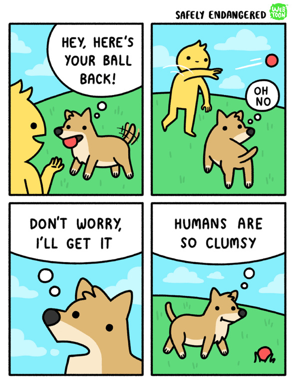how dogs think when we throw the ball - meme
