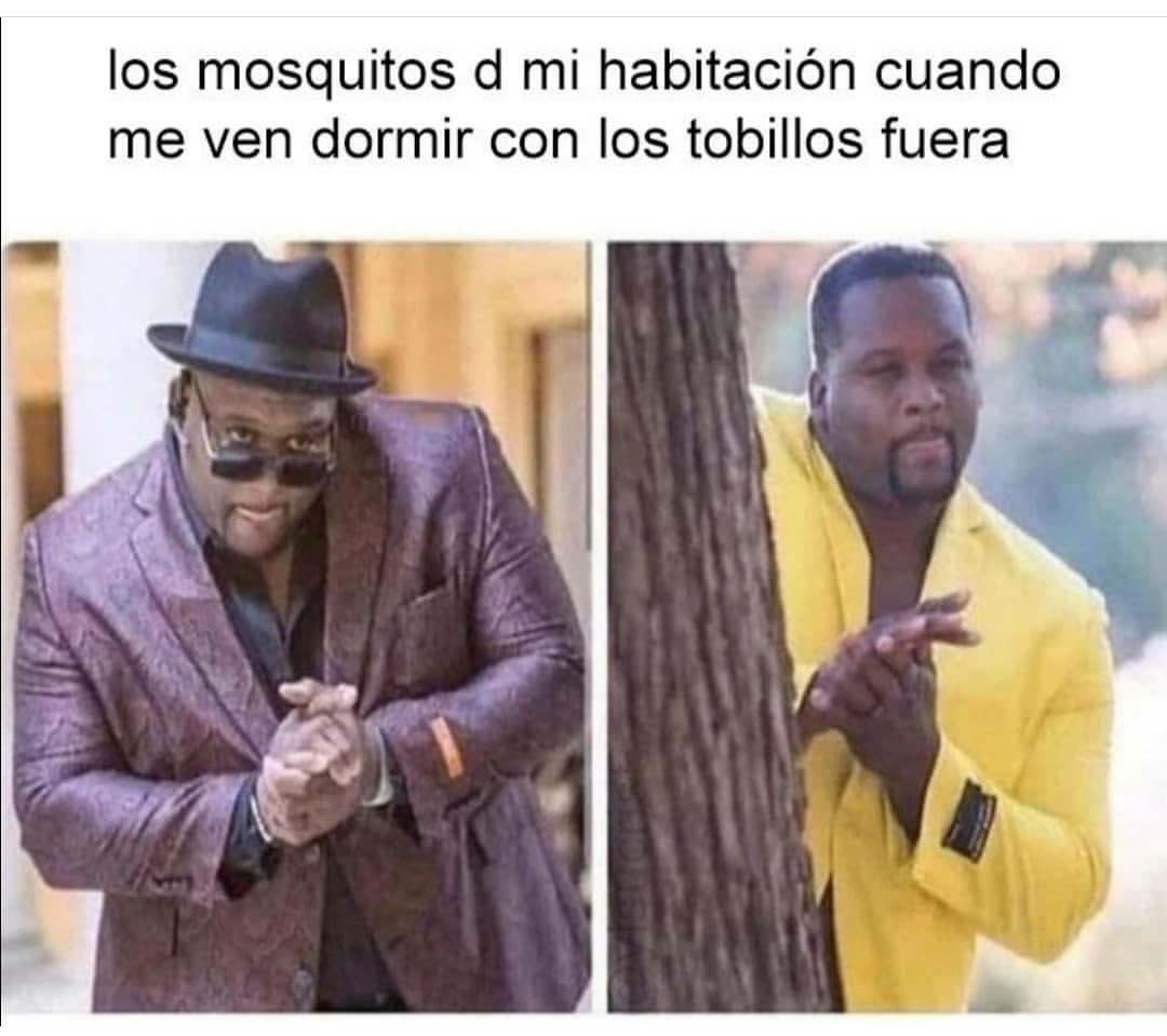 Q ruina los mosquitos - meme