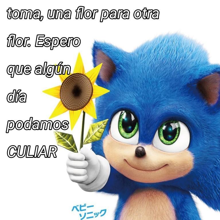 Flor - meme