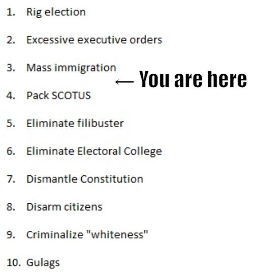 Time to invoke the 2nd Amendment. - meme