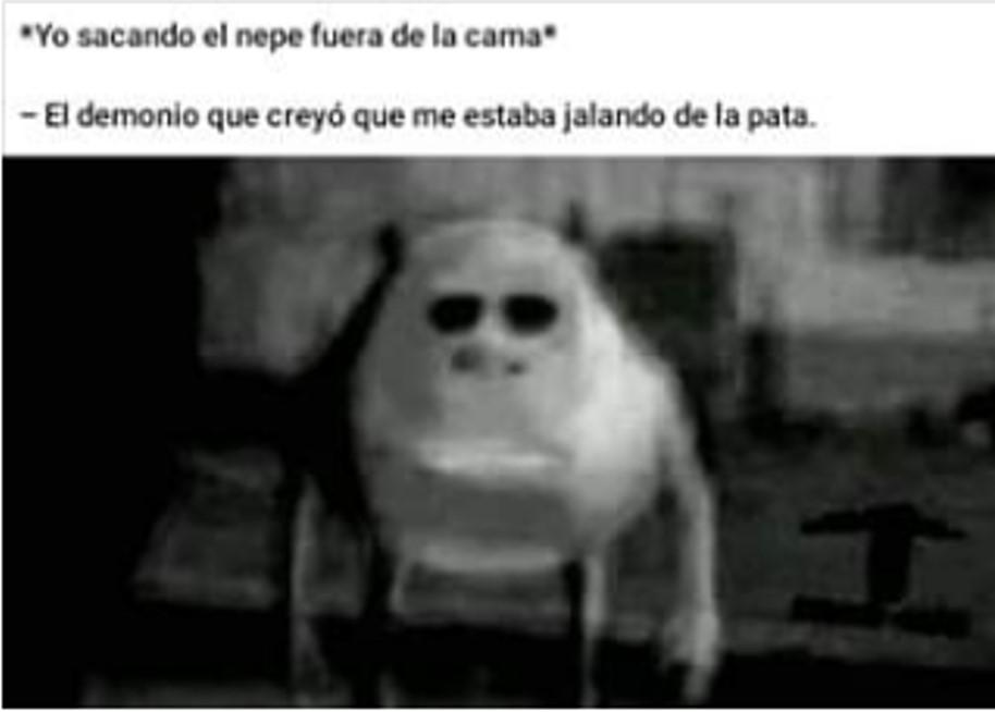 kupus - meme