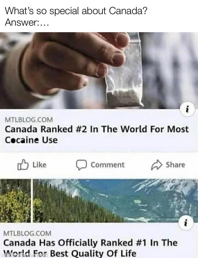 Canada and the nordic countries are known to be even greater in freedom in the US, and THey'Re SoCiALisT! - meme