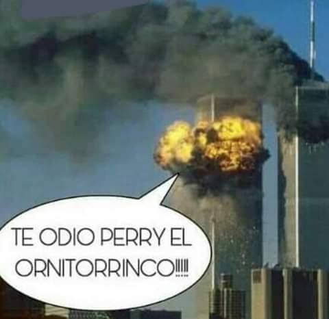 perry DX - meme
