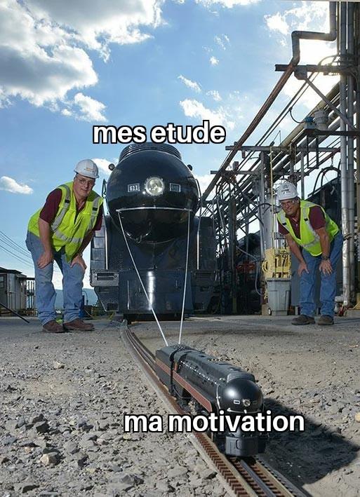 Proportion - meme
