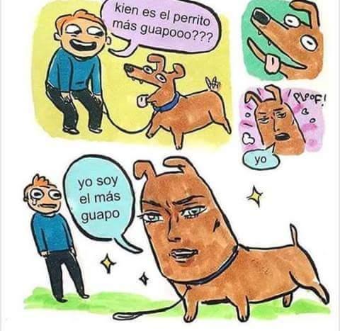 El perro da cancer pero aun asi.... - meme