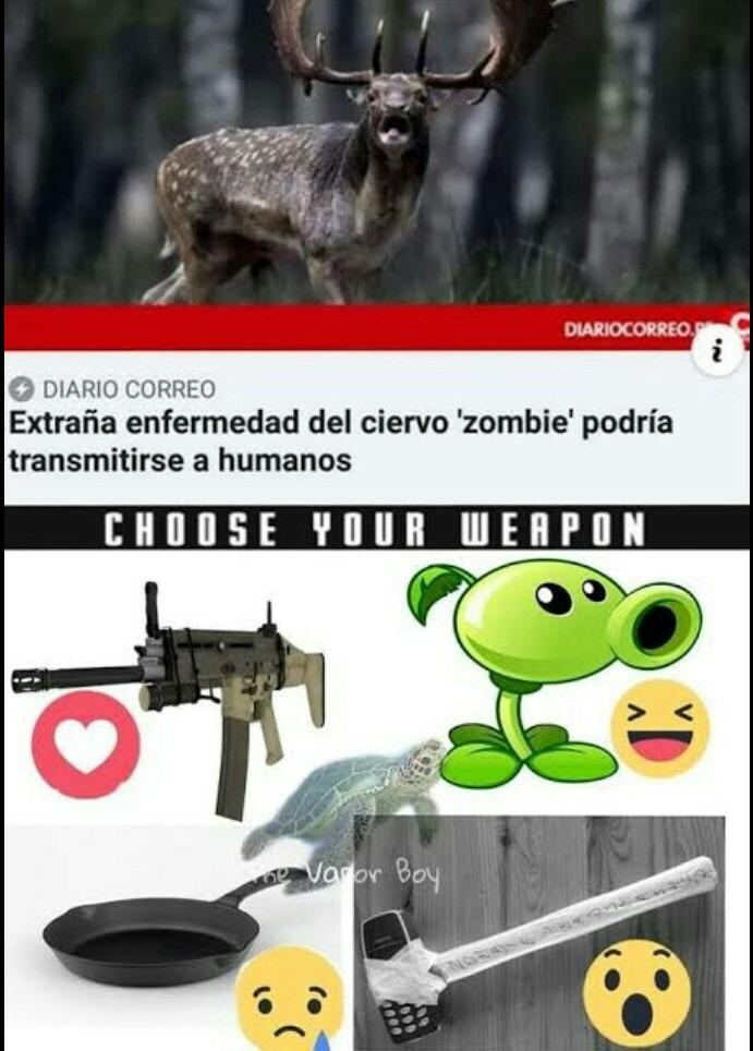 Zombi - meme