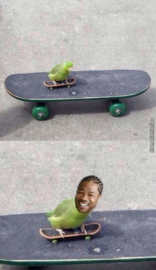for my skaters out there - meme