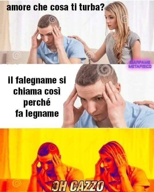 Legna - meme