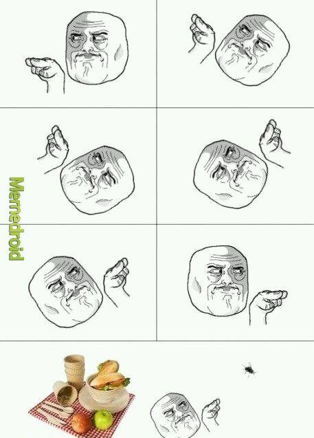 Dumb flys - meme