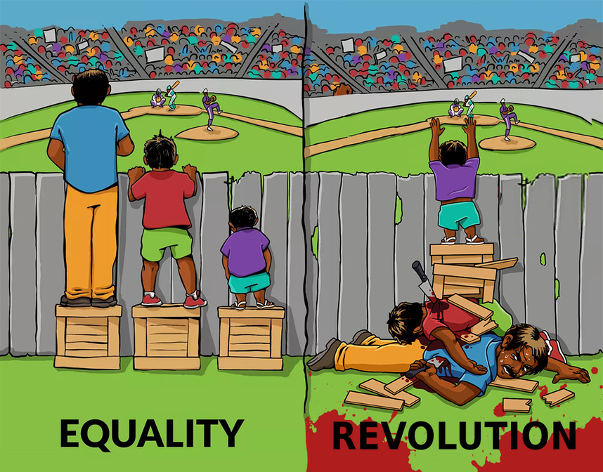 Equality vs Revolution - meme