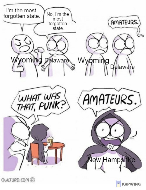 THIS IS JUST MY OPINION I forgot New Hampshire exists - meme