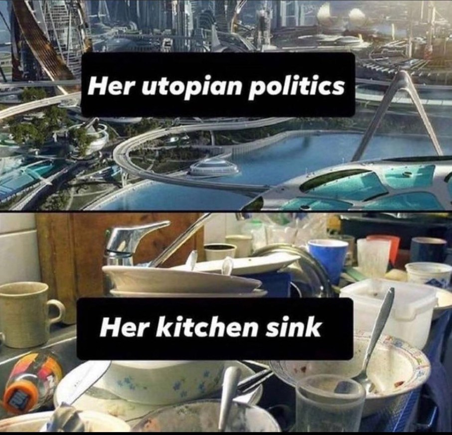 The billionaires will wash our dishes! - meme