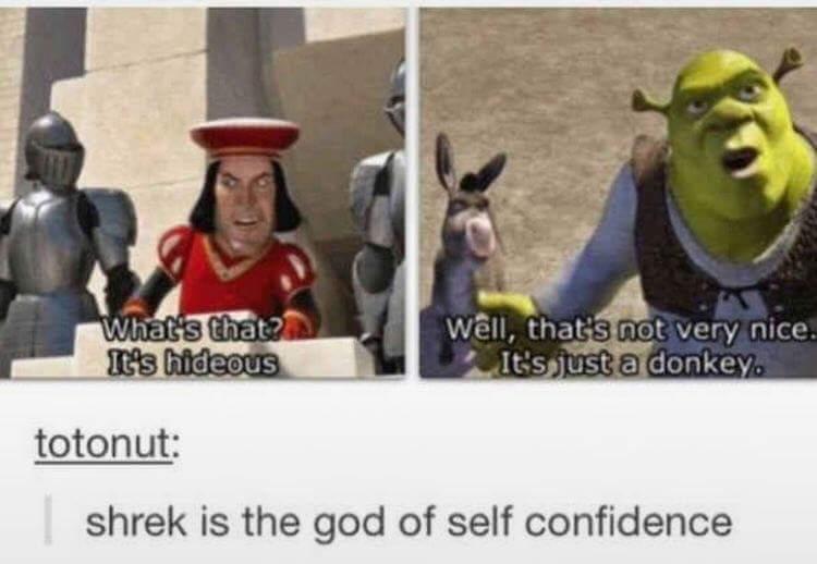 Confident - meme