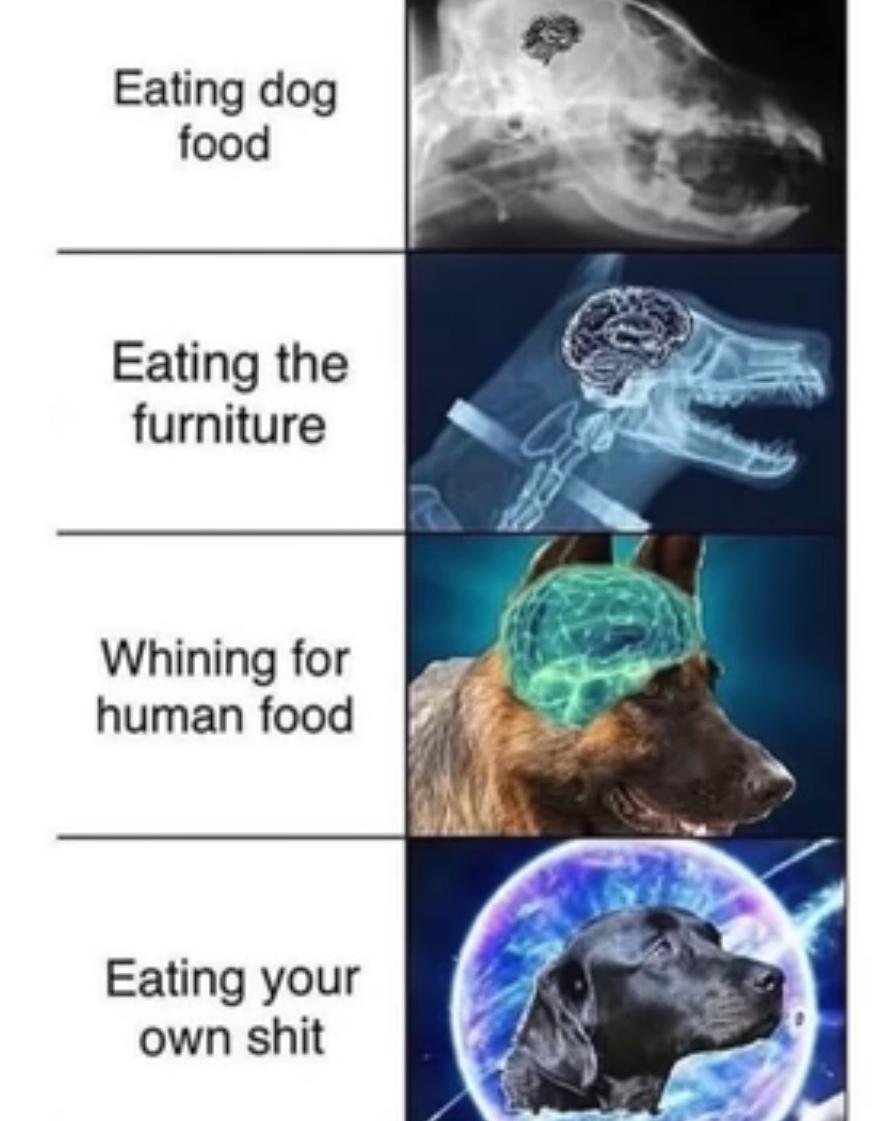 Ha hahahsgs dogs - meme