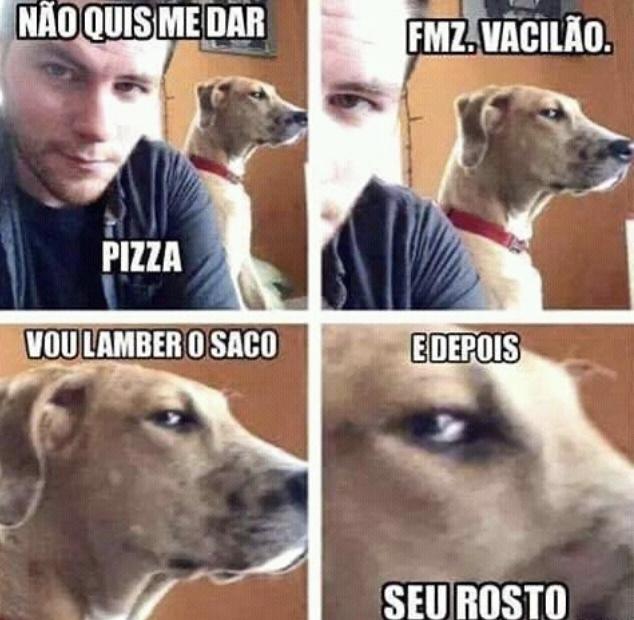 Cão e sua futura dominação mundial - meme
