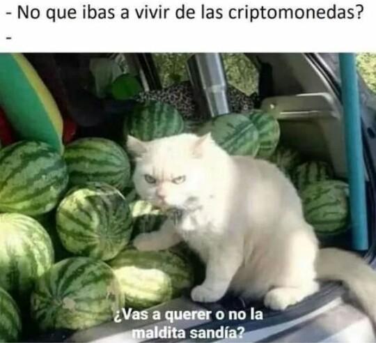 471938 - meme
