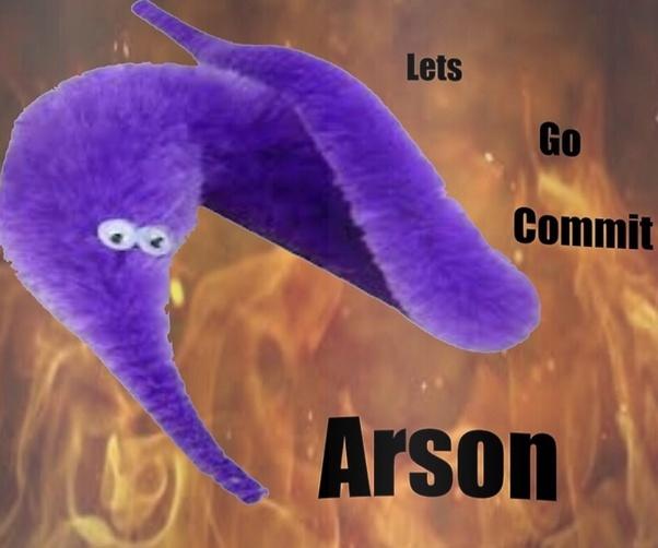 Arson? - meme