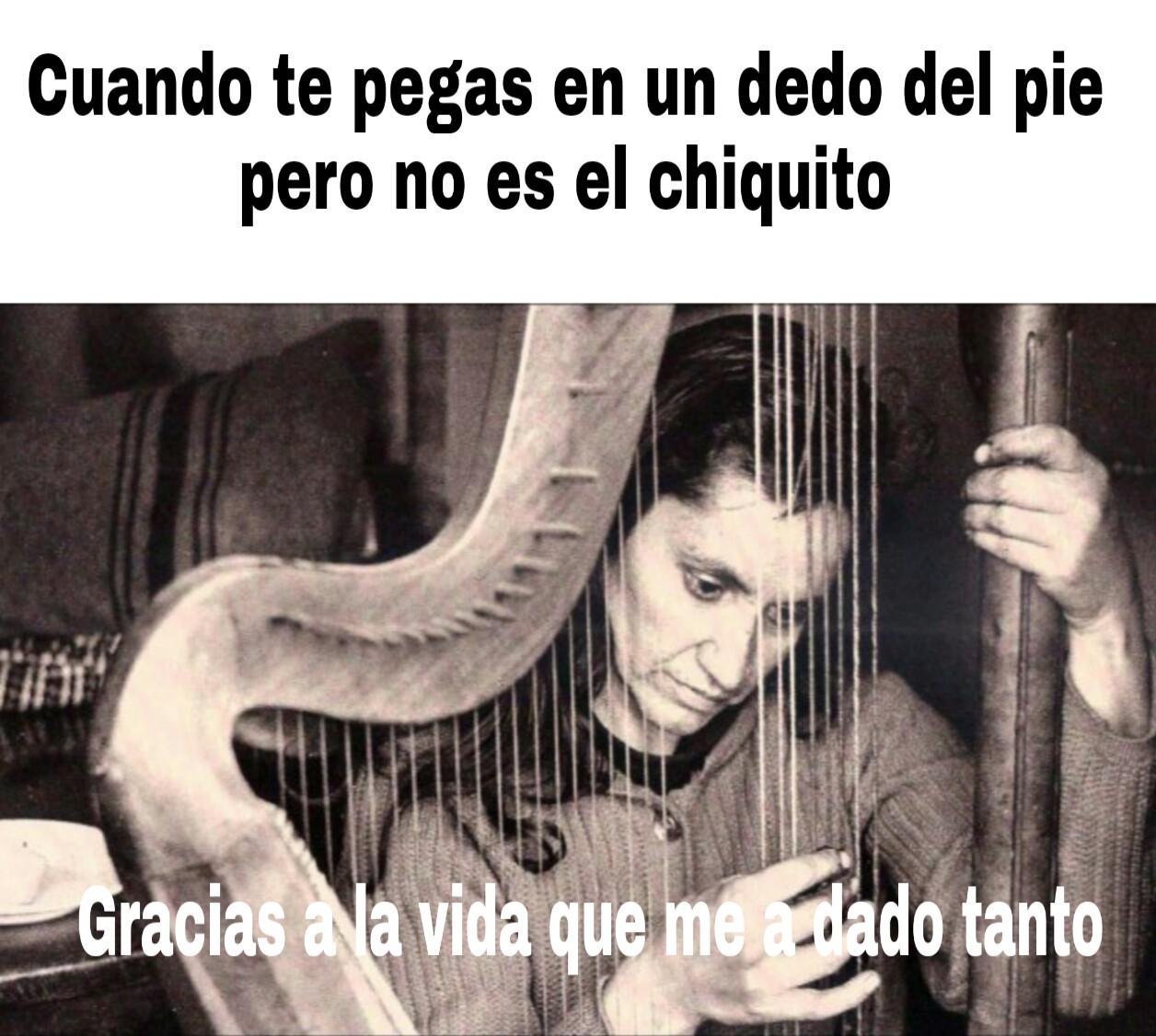 Violeta Parra - meme