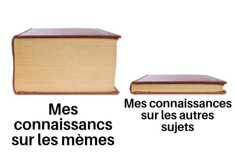 Voilà comment je compare les connaissances - meme