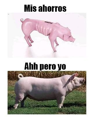 Cerdo - meme