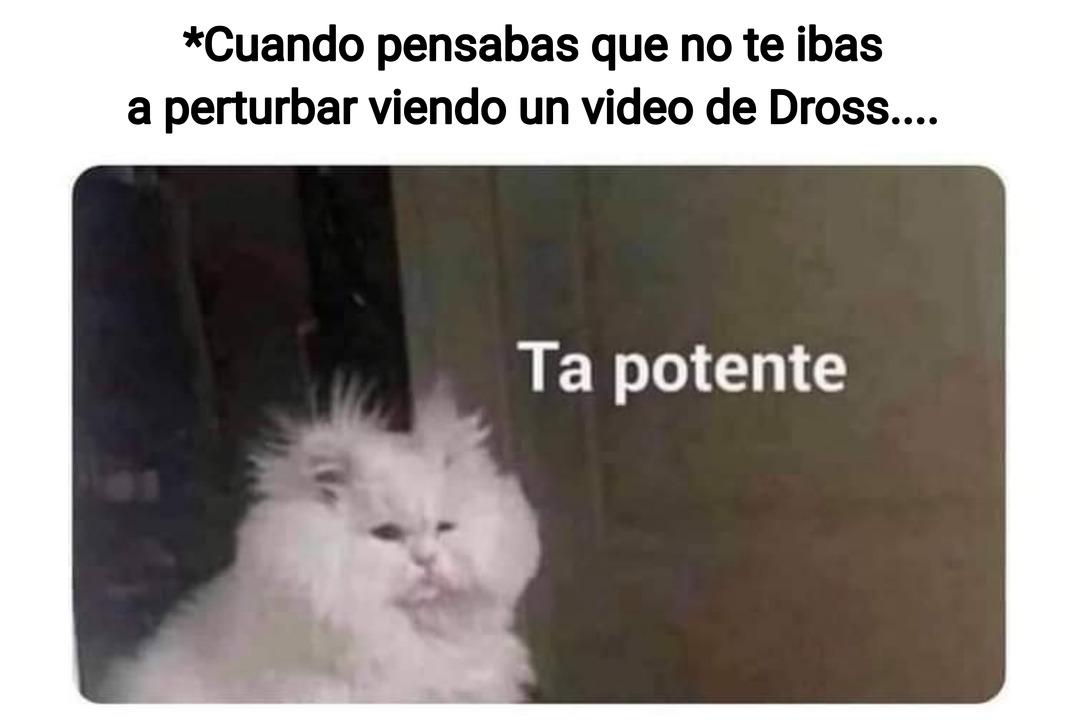PERTURBADROSS - meme